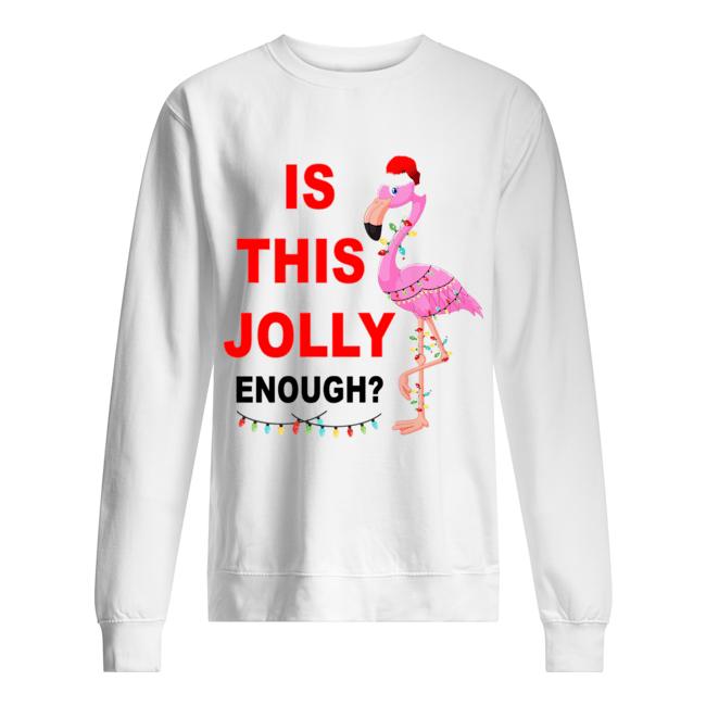 Christmas Flamingo Adult Mens Casual Long Sleeve Hoody T-Shirt